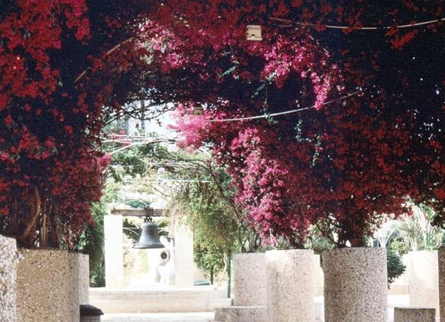 אדריכלות נוף פארק גן הפעמון